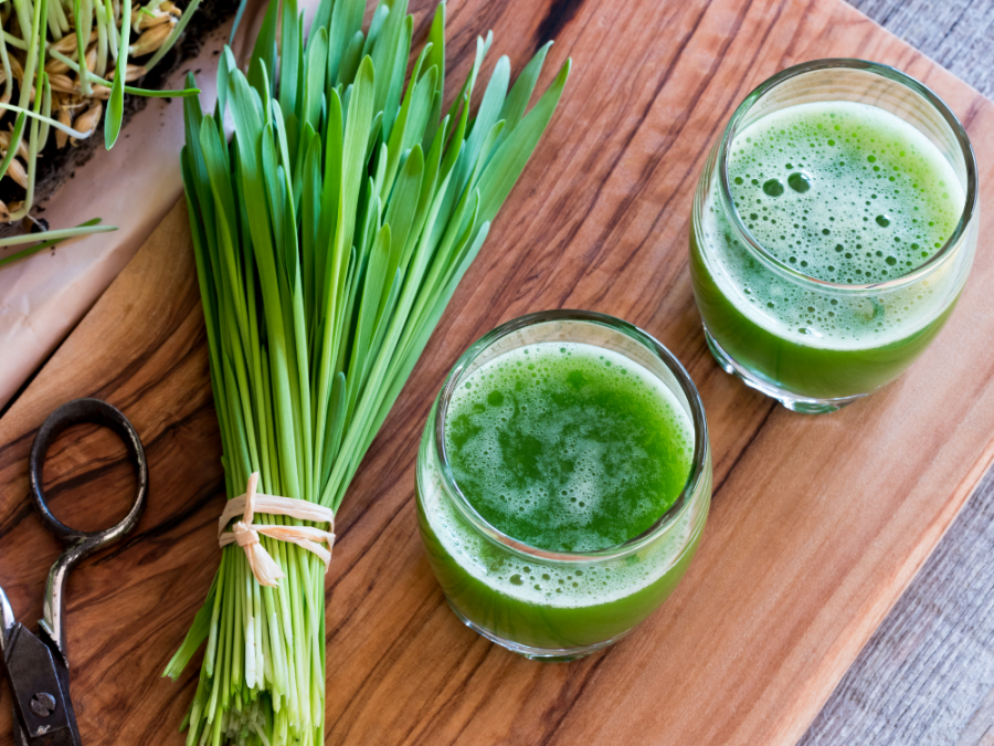 Need an Amazing Wheatgrass Juicer? Try These!